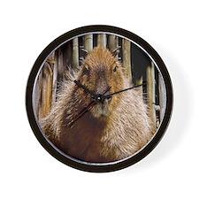 (12) Capybara Staring Wall Clock