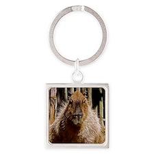 (12) Capybara Staring Square Keychain