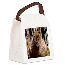 (12) Capybara Staring Canvas Lunch Bag