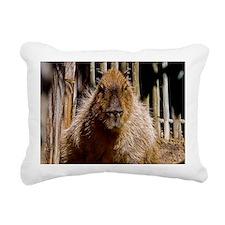(12) Capybara Staring Rectangular Canvas Pillow