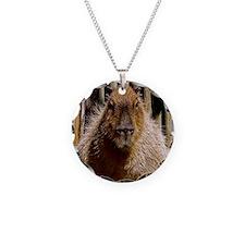 (12) Capybara Staring Necklace
