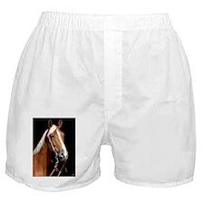 chestnut_lgframed Boxer Shorts