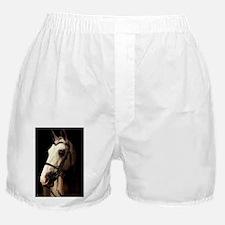 christopher_lp Boxer Shorts
