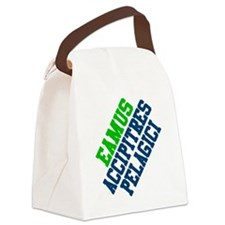 seahawks Canvas Lunch Bag