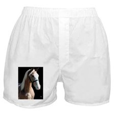 logan_card Boxer Shorts