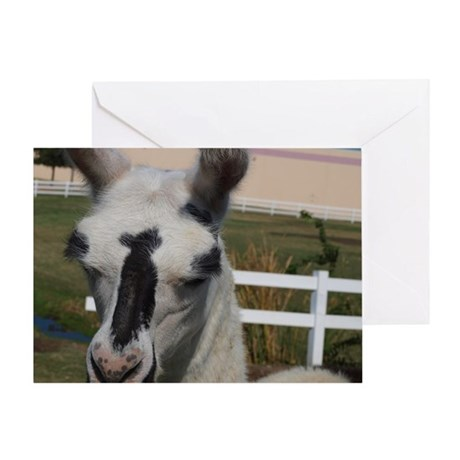 Llama Frowns Greeting Card