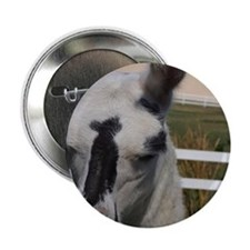"""Llama Frowns 2.25"""" Button"""