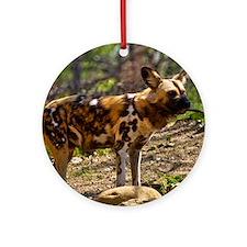 (2) African Wild Dog  1932 Round Ornament