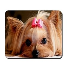 Yorkie greeting Mousepad