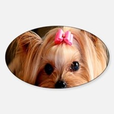 Yorkie post Decal
