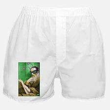 calvin_poster01 Boxer Shorts