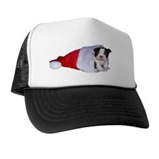 xmas_funtainer_boston Trucker Hat