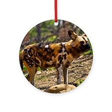 (15) African Wild Dog  1932 Round Ornament