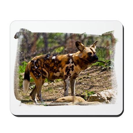 (16) African Wild Dog 1932 Mousepad
