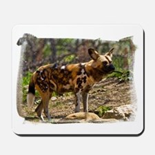 (16) African Wild Dog  1932 Mousepad