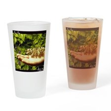 PSTR-butterfly copy Drinking Glass