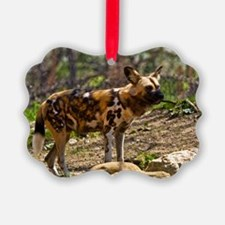 (10) African Wild Dog  1932 Ornament