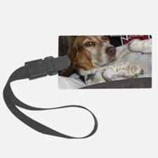 loveable rescue Luggage Tag
