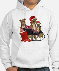 3 Pitbull with Sleigh Hoodie