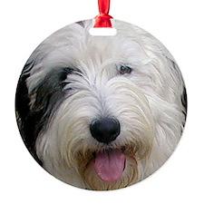 OES-orn1 Ornament