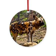 (12) African Wild Dog  1932 Round Ornament