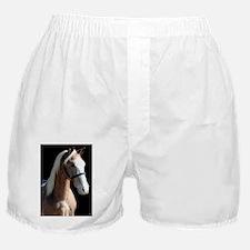 logan_lp Boxer Shorts