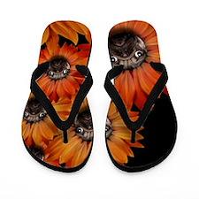 flower_pug+8x10 Flip Flops
