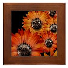 flower_pug+8x10 Framed Tile