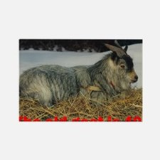 goat40 Rectangle Magnet