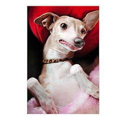 Italian Greyhound Post Cards Gooney IG