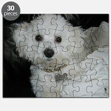 Sasha-II-FEB-27-2010 Puzzle