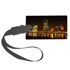 2010PghLightUp409_LG Luggage Tag