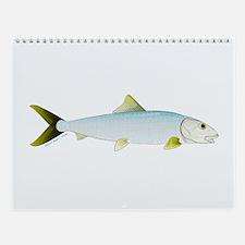 Florida Keys Fish Wall Calendar 3