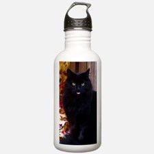 KITTY TONGE 441 Water Bottle