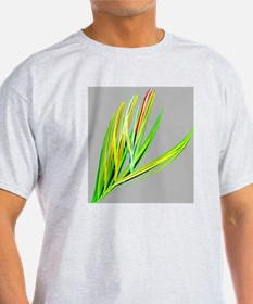 elegant peacock feather abstract art T-Shirt