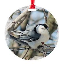 WhiteBrNHTileSF Round Ornament