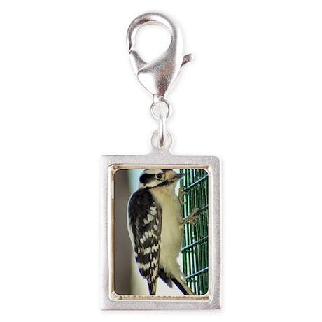 Female Downy Woodpecker sm Silver Portrait Charm