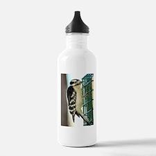 Female Downy Woodpecke Water Bottle