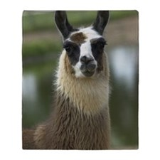 llama1_lframe Throw Blanket