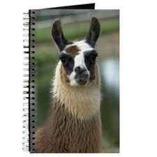 llama1_card Journal