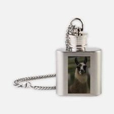 llama1_3Giphone Flask Necklace