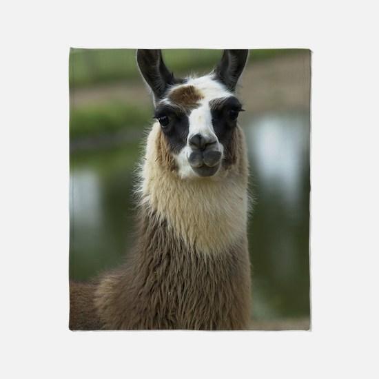 llama1_lp Throw Blanket