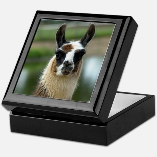 llama1_rnd Keepsake Box