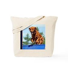 2011_Quint_Cover_01 Tote Bag