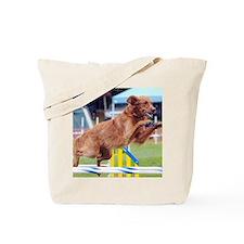 2011_Quint_08 Tote Bag