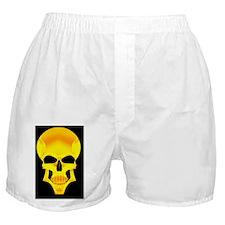 large frame print copy Boxer Shorts