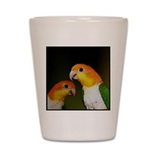 whitebelliedcaique Shot Glass