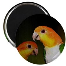 whitebelliedcaique Magnet
