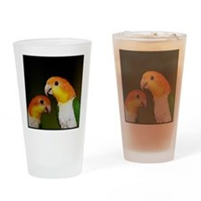 whitebelliedcaique Drinking Glass