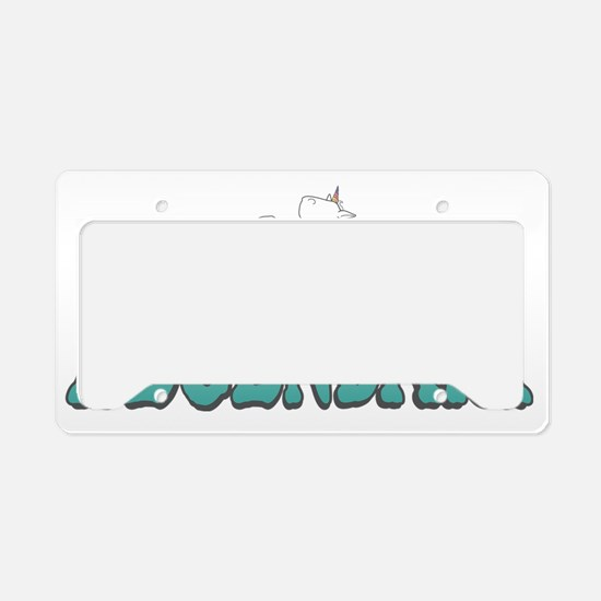 nphoau License Plate Holder